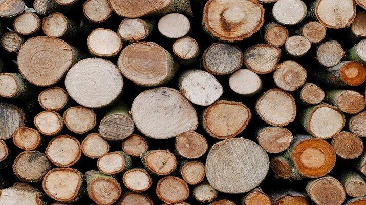 rondins bois brut